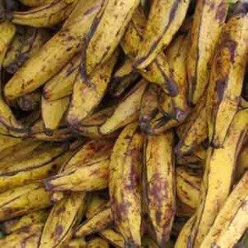 Banane plantain alloco du même jour