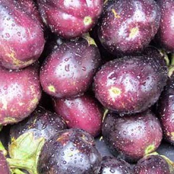 Aubergine violette (grosse)